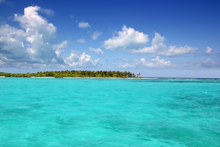 turquoise water: Contoy paradise island that is a sealife nature reserve with palm trees in Mexico