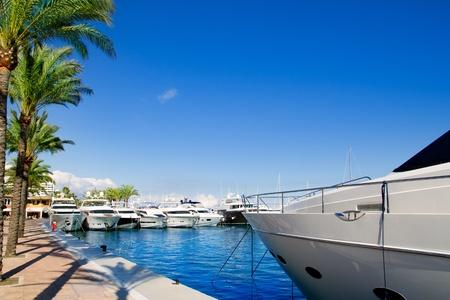 portals: Calvia Puerto Portals Nous luxury yachts in Majorca Balearic island from Spain