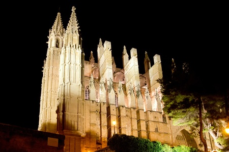Cathedral of Palma de Mallorca La Seu night view perspective Majorca Balearics photo