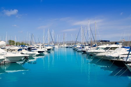 Alcudia Port Bonaire Marina in North Majorca in Mallorca Balearic island of Spain photo