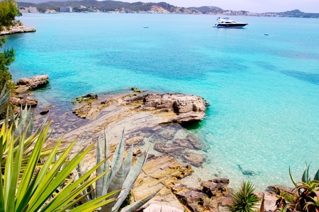 Calvia Cala Fornells turquoise mediterranean in Majorca at balearic islands of Spain photo