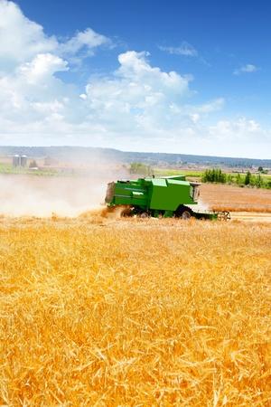farm tractor: Combine harvester harvesting wheat cereal in farm