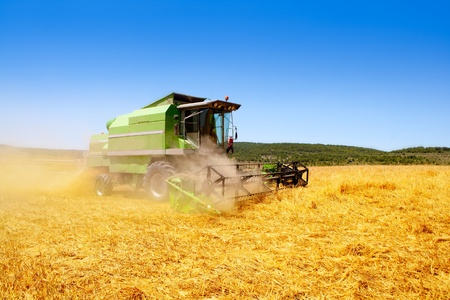 combine harvester: Combine harvester harvesting wheat cereal in spain field