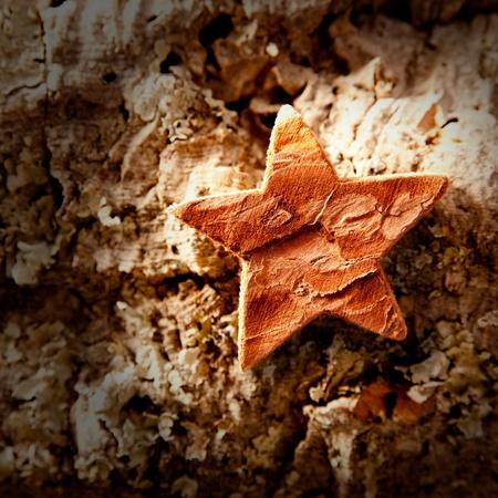 bark star shape christmas symbol on cork background Stock Photo - 10743099