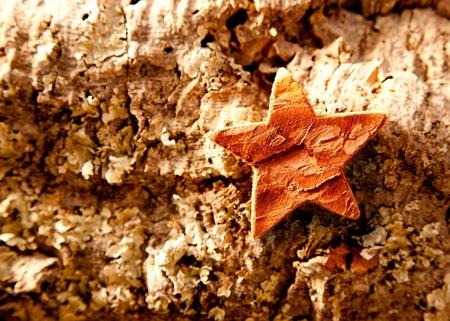 bark star shape christmas symbol on cork background Stock Photo - 10742862