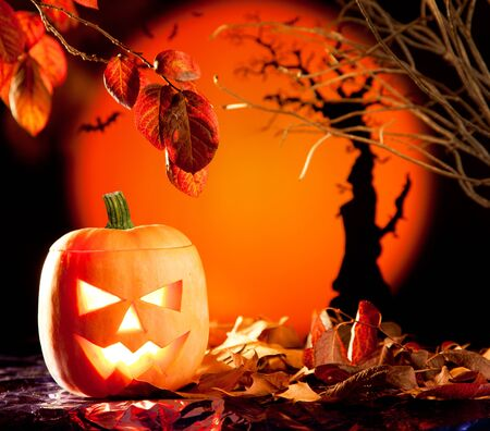 Halloween orange pumpkin lantern with autumn leaves Stock Photo - 10838158