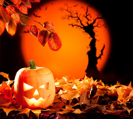 Halloween orange pumpkin lantern with autumn leaves photo