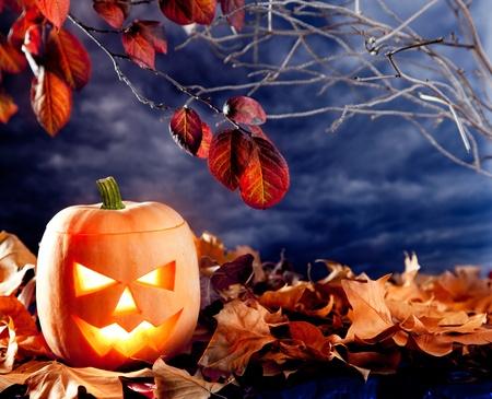 sky lantern: halloween lantern pumpkin  in dark sky clouds moonlight
