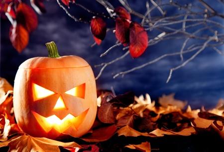 halloween lantern pumpkin  in dark sky clouds moonlight photo