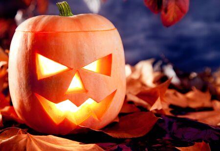 scary forest: halloween lantern pumpkin  in dark sky clouds moonlight