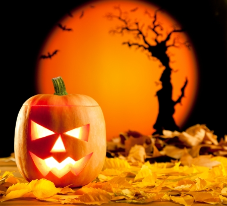 Halloween orange pumpkin lantern with autumn leaves Stock Photo - 10838063