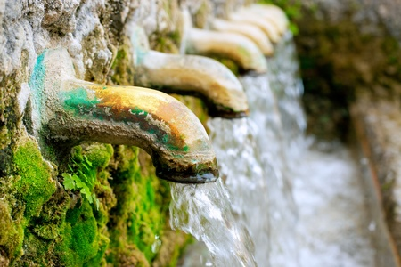 purls: brass fountain water source spring with green moss