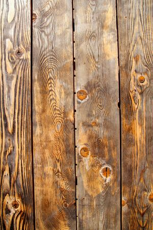 aged old pine wood grunge texture background photo