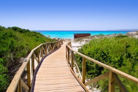 els: Formentera migjorn Els Arenals beach walkway of wood in Spain