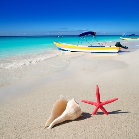 beach starfish and seashell with tropical boat in turquoise sea photo