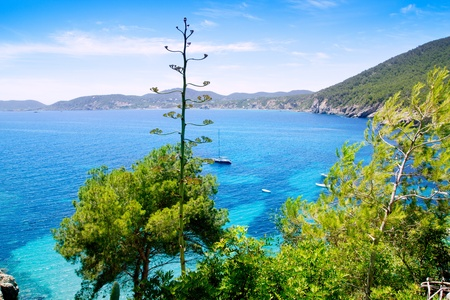 Ibiza Cala de Sant Vicent caleta de san vicente beach turquoise water photo