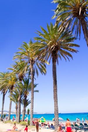 beaches of spain: Ibiza Platja En bossa beach with palm trees a party landmark Stock Photo