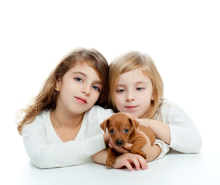 sister kid girls and puppy mascot pet mini pinscher on white background photo