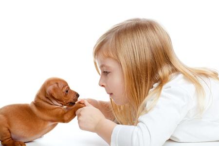 Blond children girl with dog puppy mascot mini pinscher on white background photo