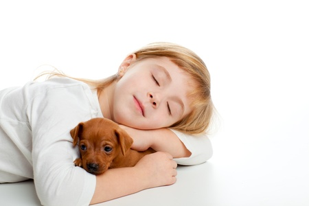 blond kid girl sleeping with mini pinscher pet mascot dog on white background photo