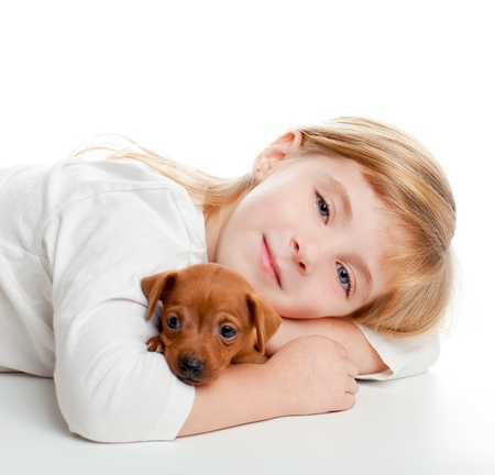 miniature dog: blond kid girl with mini pinscher pet mascot dog on white background Stock Photo