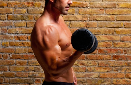 dumb: muscle shaped body man with weights on brick wall gym