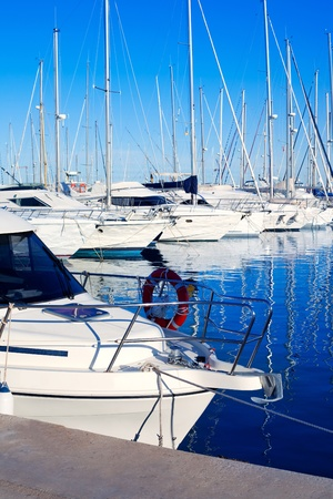 Blue Denia marina port in Alicante Spain with boats in a row photo