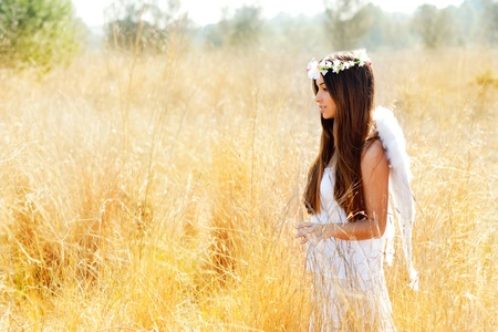 angel hair: Angel etchnic woman in golden field with feather white wings and flowers crown