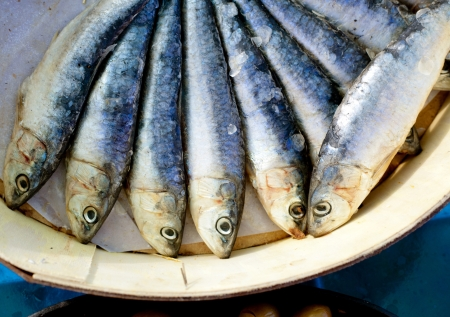 brine salted sardines fish in round wood box in Mediterranean photo