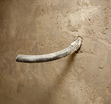 conduit: electrical coil conduit pipe on box embedded in the cement mortar wall Stock Photo