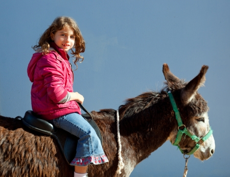ponies: donkey mule with kid little girl riding happy smiling on blue  Stock Photo
