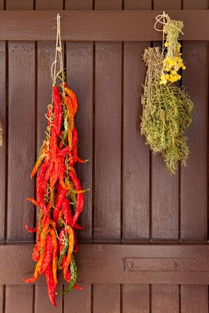 dried chili pepper rosmery and chamomile hanged on mediterranean brown door photo
