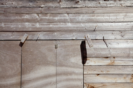 Dried gray aged woods in mediterranean shore whatered by sun photo
