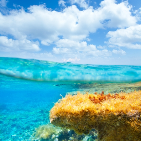 Ibiza Formentera underwater under over waterline blue sky seascape photo