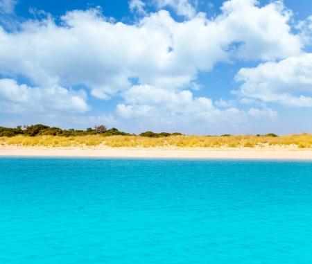 alga: Espalmador in Balearic formentera island s Alga beach Stock Photo