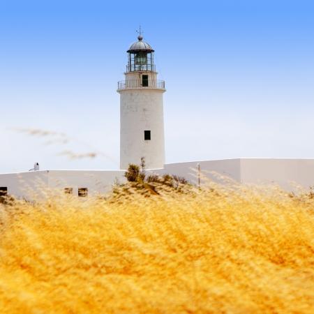 La Mola lighthouse in formentera with golden dried grass field photo