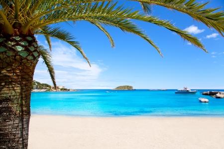 ibiza: Ibiza Patja des Canar beach with turquoise water in Balearic islands