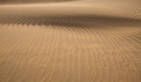Desert sand dunes in Maspalomas Gran Canaria at Canary islands photo