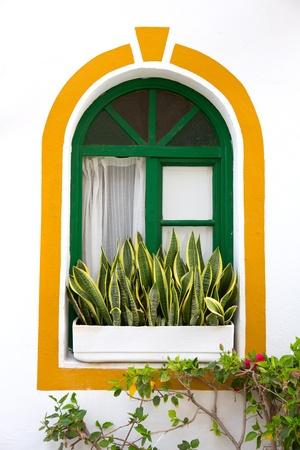 Gran canaria Puerto de Mogan white houses colonial in canary Islands