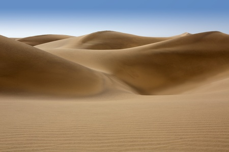Desert dunes sand in Maspalomas Oasis Gran Canaria at Canary islands photo
