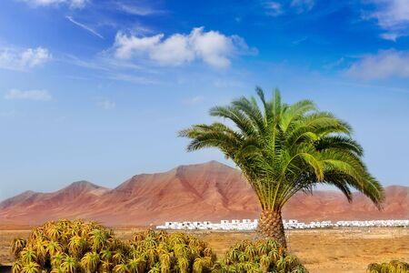 lanzarote: Ajaches mountain in Lanzarote Punta Papagayo at Canary Islands