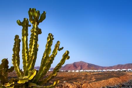 lanzarote: Ajaches mountain in Playa Blanca Lanzarote white houses