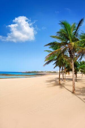lanzarote: Arrecife Lanzarote Playa Reducto beach tropical palm trees at Canary Islands Stock Photo