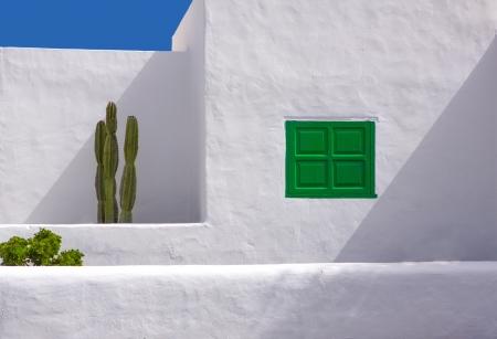 bartolome: Lanzarote san Bartolome white typical house cactus and green window