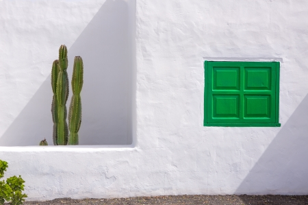 canarian: Lanzarote san Bartolome white typical house cactus and green window