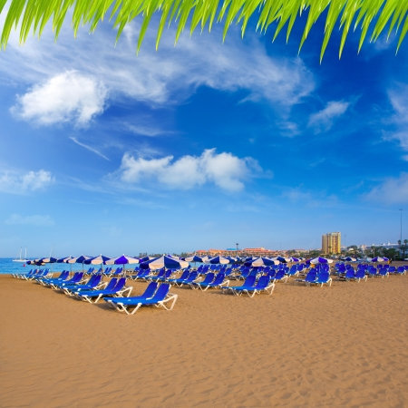 las vistas: Beach Las vistas in Adeje coast hammocks at Tenerife south Canary Islands