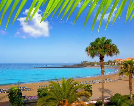 las vistas: Las vistas beach Arona in costa Adeje Tenerife south at Canary Islands