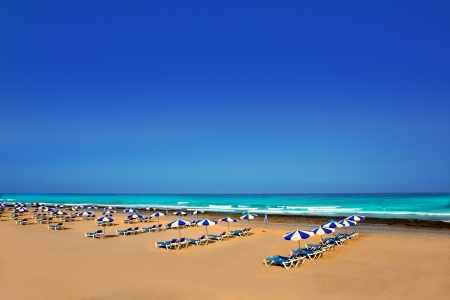 troya: Adeje Arona Beach Troya Playa Las Americas in Tenerife South