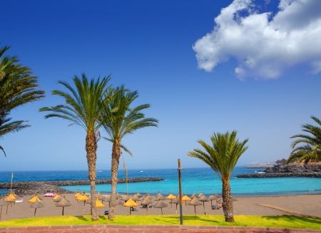 canary: Adeje coast Las americas Beach in south Tenerife at Canary Islands
