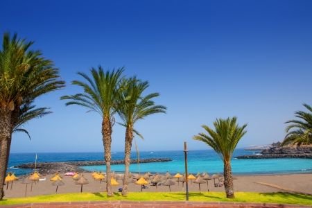 adeje: Adeje coast Las americas Beach in south Tenerife at Canary Islands